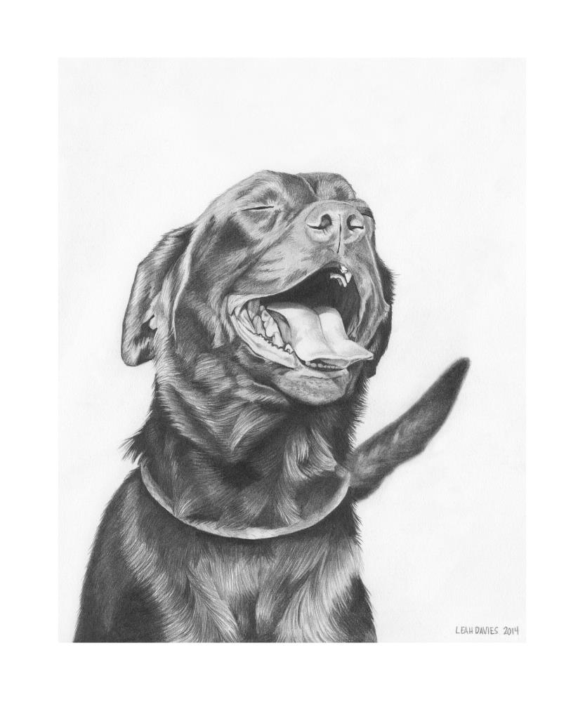 The Happiest Pup | Leah Davies Art
