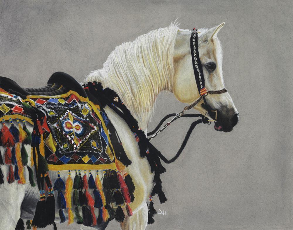 Arabian Knight |