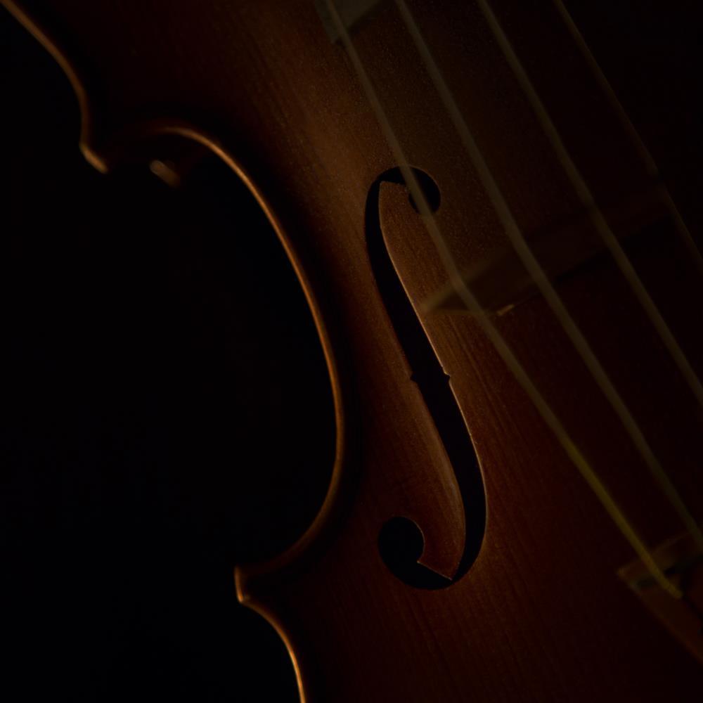Violin | Fine Art Photography