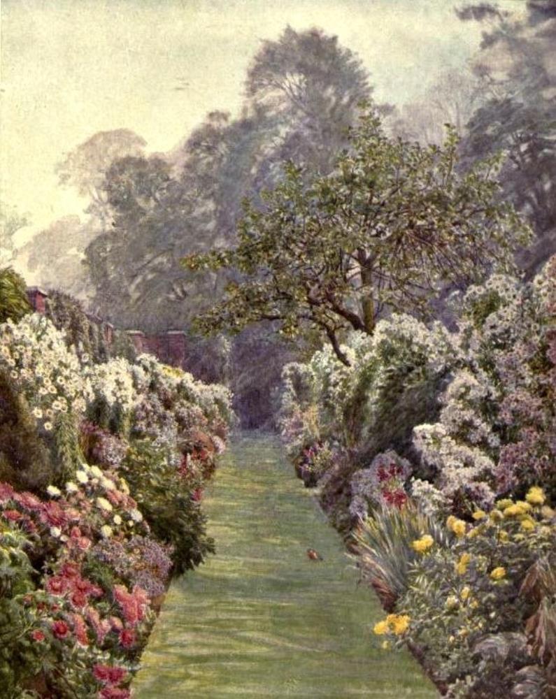 Suburban Garden Hampstead | Bella Fine Art Prints