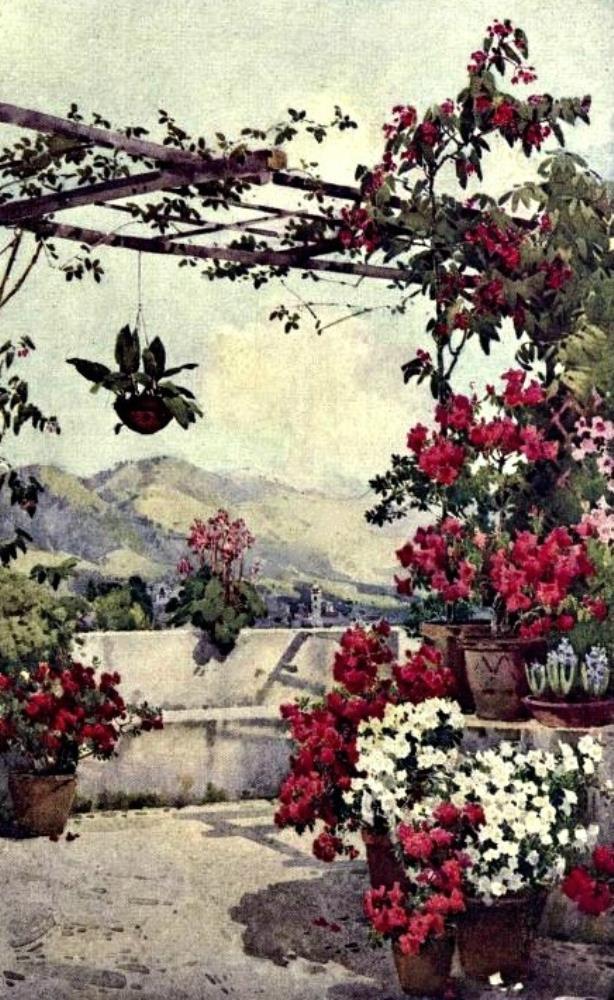 Azaleas Quintallheos | Bella Fine Art Prints