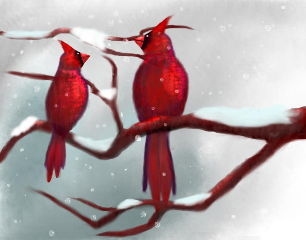 Cardinals  Snowing , Flat... | My Art