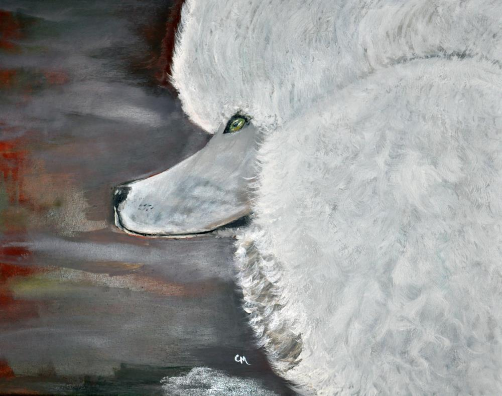 OilPaintingWhitePoodle | Painting by Cindy Mierzwa