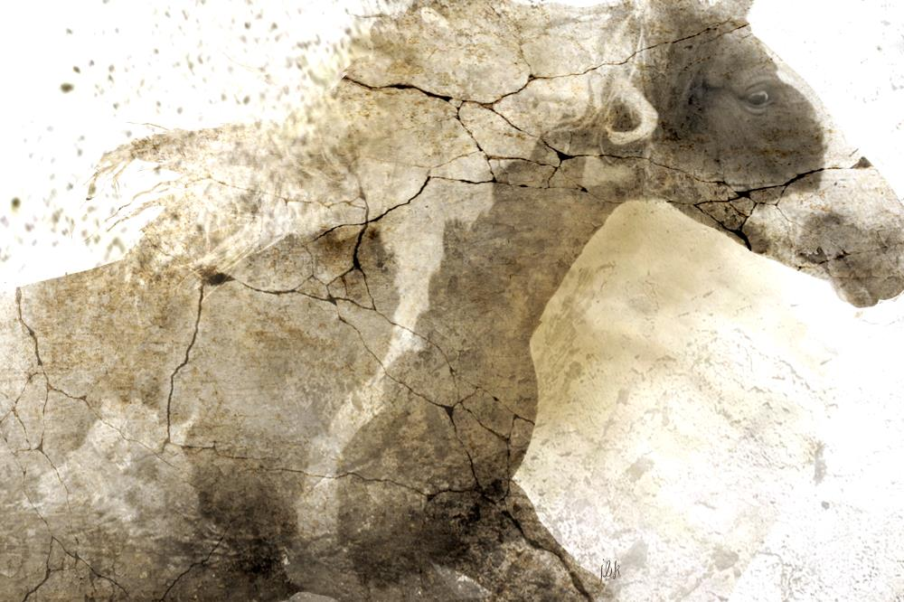 Ancient Marble Horse   JBK Photography