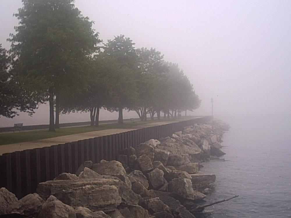 Lake Front Fog | Our Collection of Love