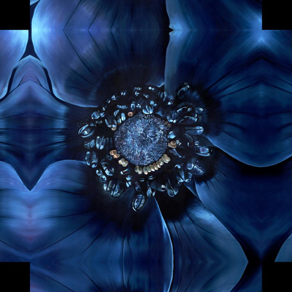 Blue Anenome | Kerry Stafford