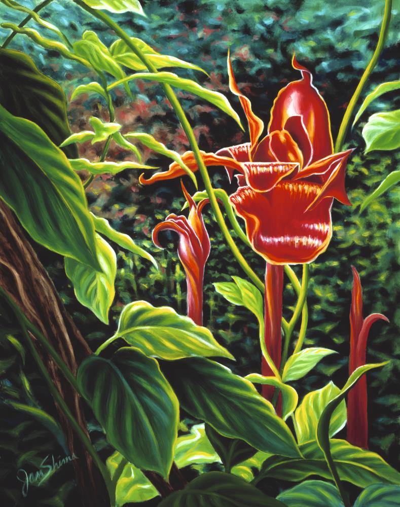 Tropic Flame-Torch ginger | Jan Shima Artwork