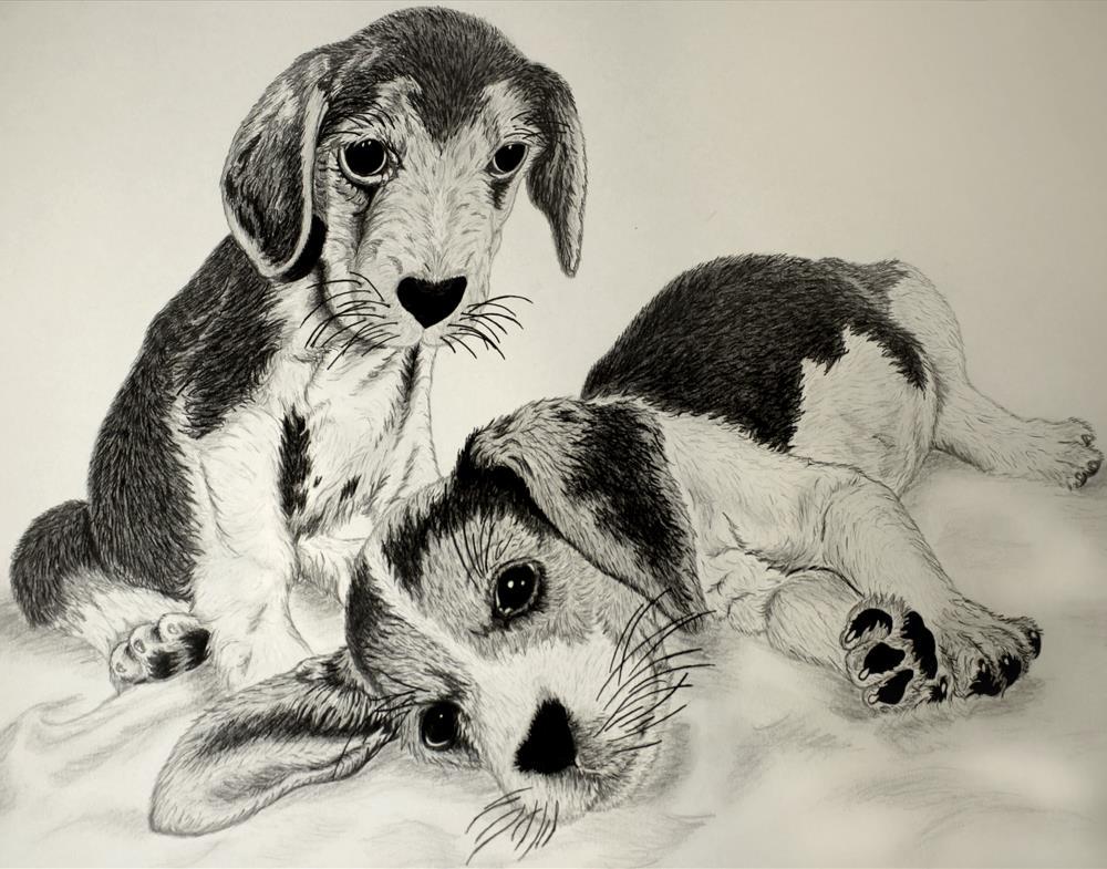 Beagle Puppies | SkylynArt