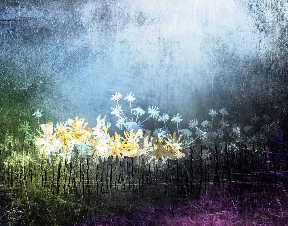 Golden Flowers on Dark Ni... | Rich Poling Creative Arts