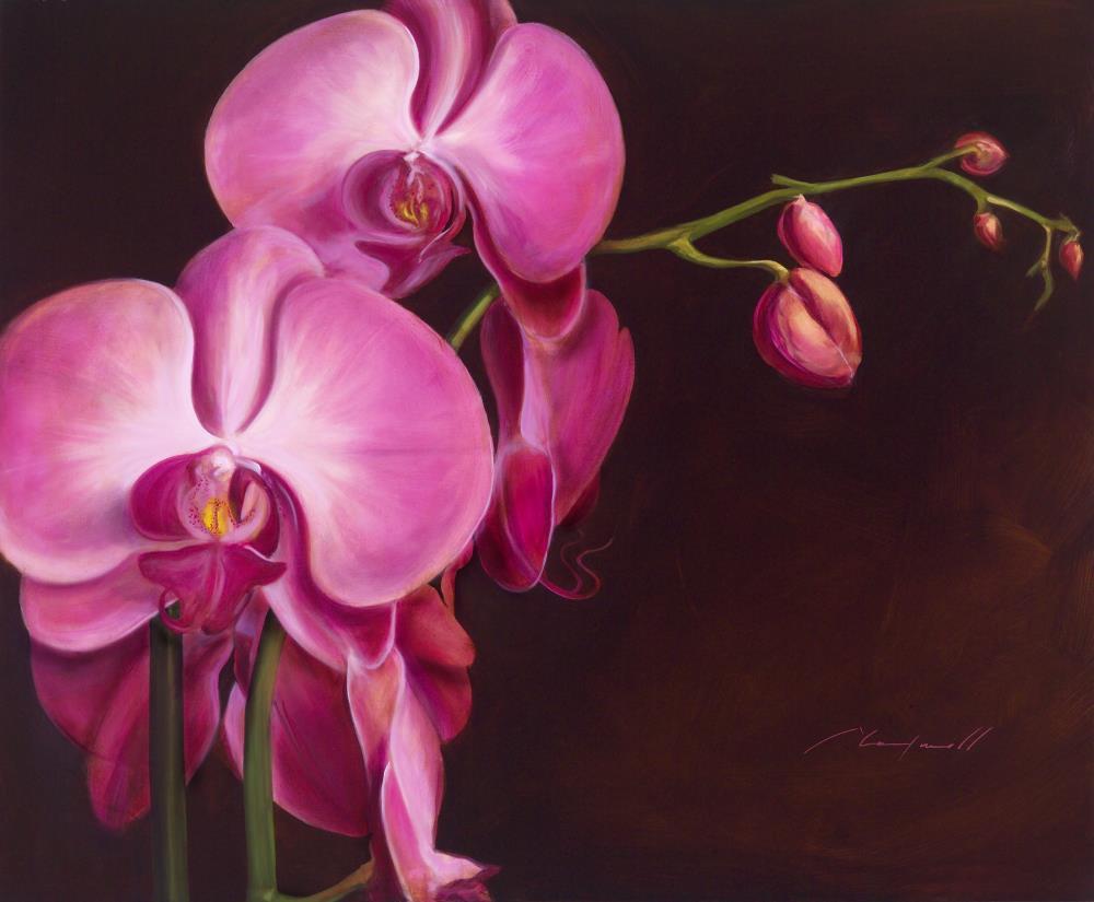 Orchidfinal   Chad Maxwell - Fine art