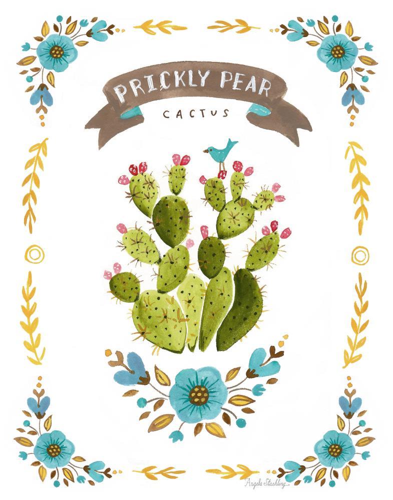 PricklyPearPrint11x14   Angela Staehling Illustra...