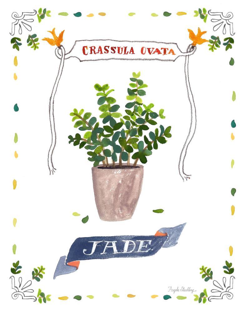 JadePrint11x14   Angela Staehling Illustra...