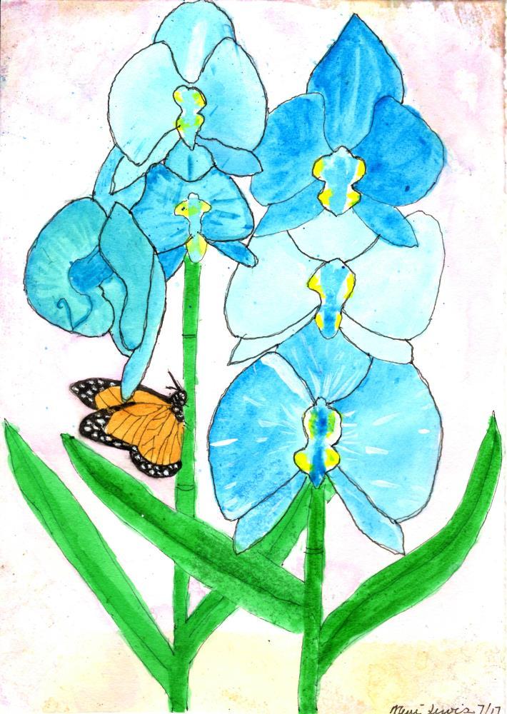 Blue Orchids   Not An Artist