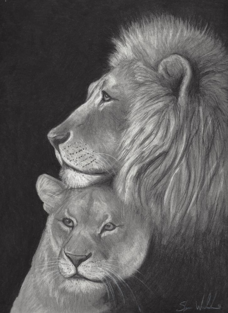 LionLoveJPG | sLs Artistry