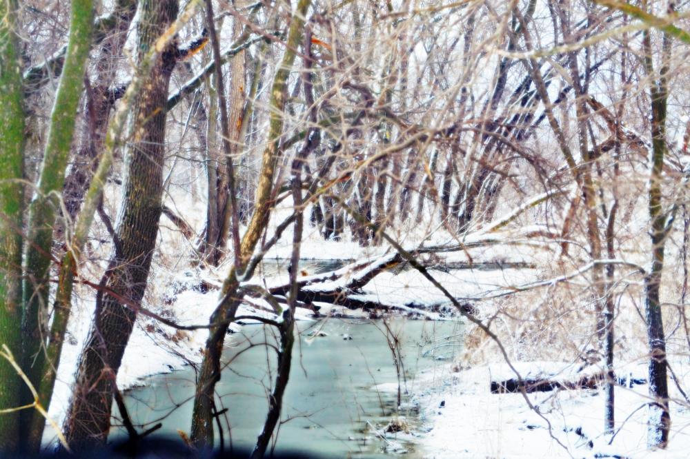 North Fork Zumbro   Art & Photography
