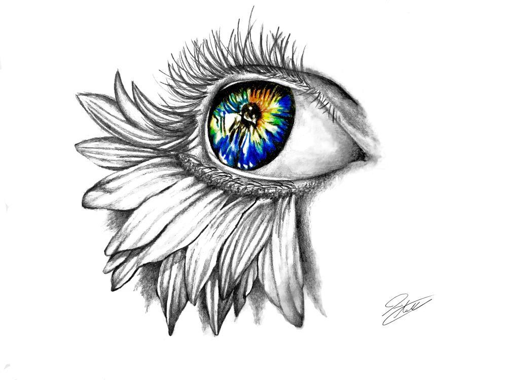 Eyes Like Wildflowers   JackleyArt