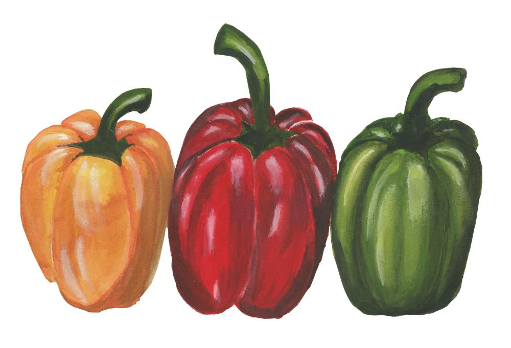 3 peppers - no Shadow | What a color by Noemi