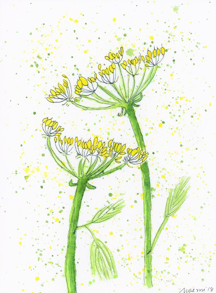 Dill 1 | What a color by Noemi