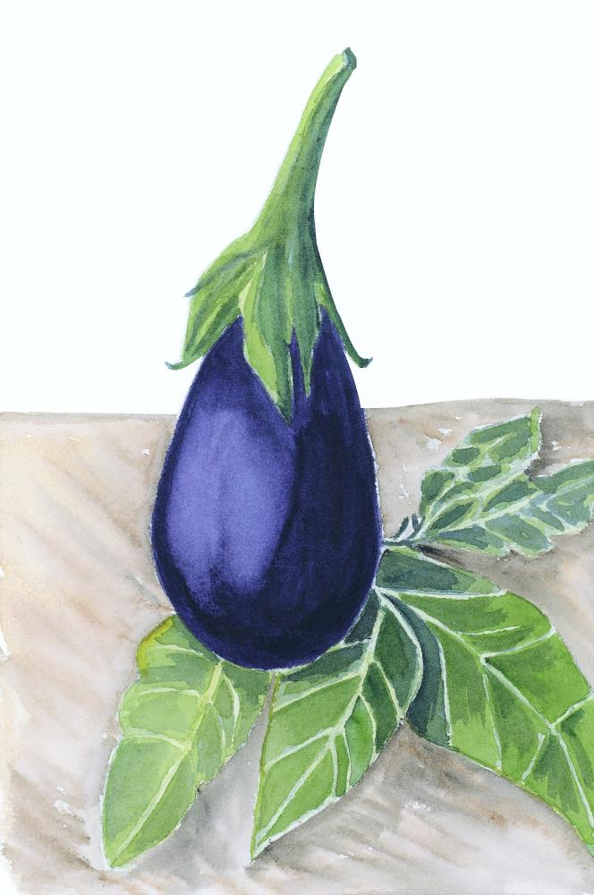 Eggplant | What a color by Noemi