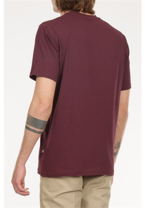 T-shirt con logo DICKIES | T-shirt | DK0A4XDBWHXMAPLETON B