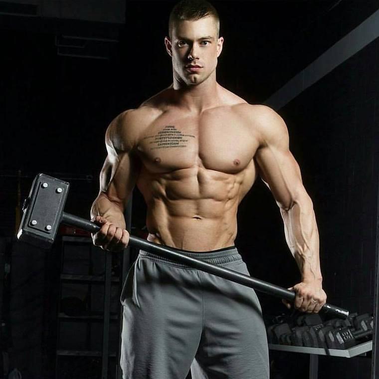 Muscle stud