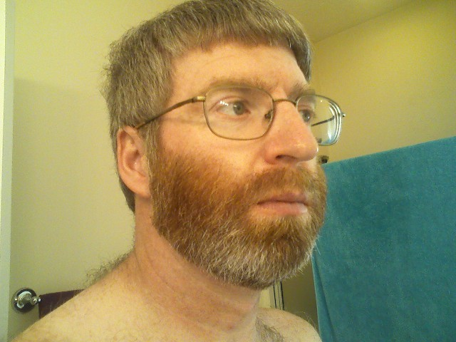 Super My Beard In Beard Journey Discussion Archive Do Not Post To This Short Hairstyles Gunalazisus