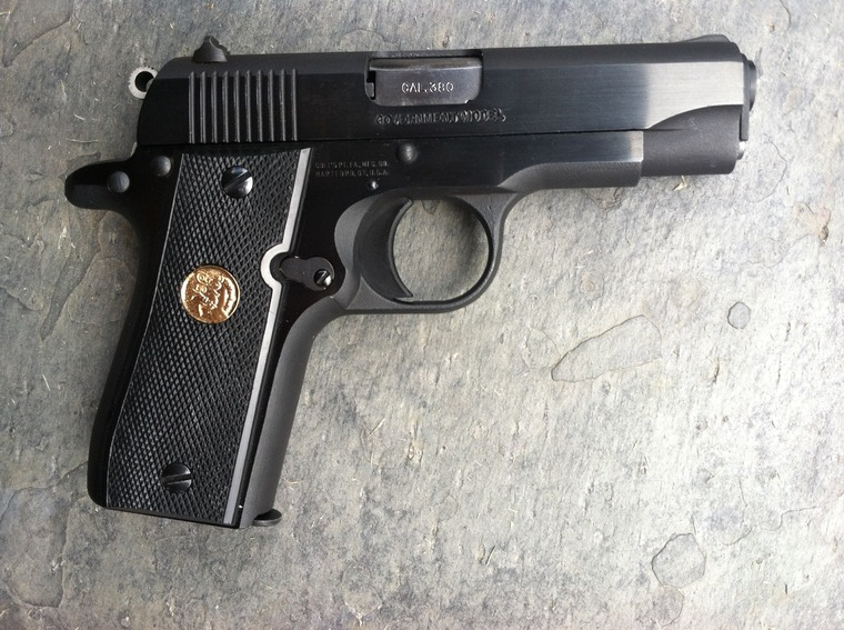 Medium-sized  380 ACP pistols [Archive] - The Firing Line Forums