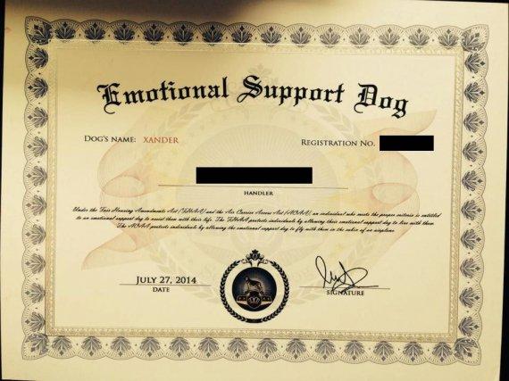 emotional support dog certificate animal register veterans tweet veterinary