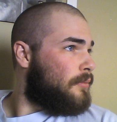 Beard Bald Head Shaved Head Or Buzzcut Page 2 Beard Board