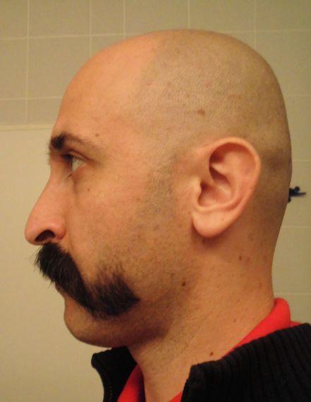 Amazing Beard Bald Head Shaved Head Or Buzzcut In Beard Themes Forum Short Hairstyles Gunalazisus