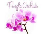 PurpleOrchids