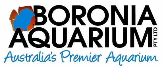 New Aquarium Classifieds