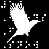 Blackbird Braille