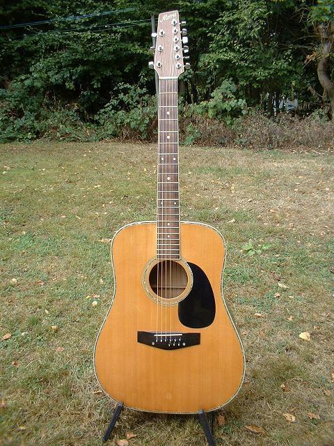 morris guitars the unofficial martin guitar forum. Black Bedroom Furniture Sets. Home Design Ideas