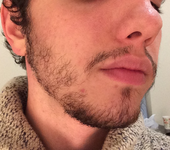 tBarge's Beard (24 yrs old ) Back at it  - Beard Board