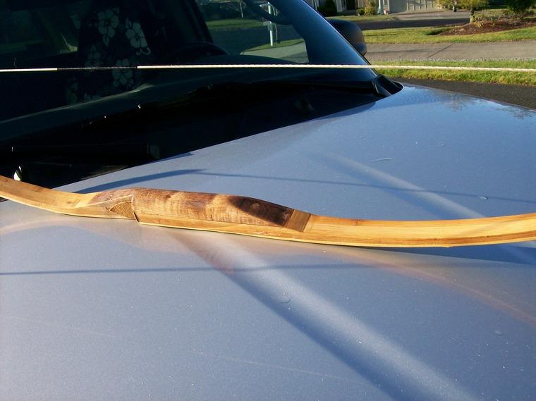 Bamboo Flooring Bows Paleoplanet