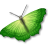 green butterfly image