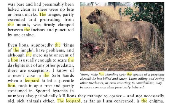 Lion Kills Lioness in Dallas Zoo - Page 2 - Animal vs Animal