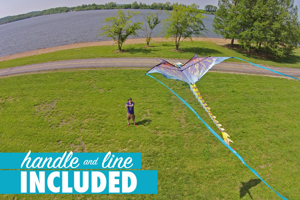 View from the air of a 3D Dragon Kite.