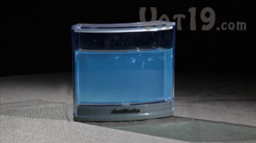 AntWorks Ant Farm starts as a blank gel