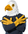 Eagle Mask and Talons