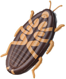 Cockroach Pool Float