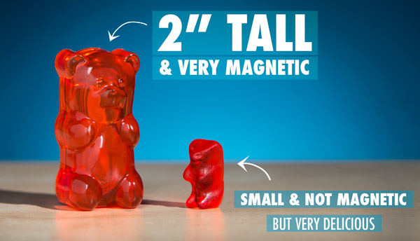 Gummy Bear Magnets are more than two times taller than a standard candy gummy bear.