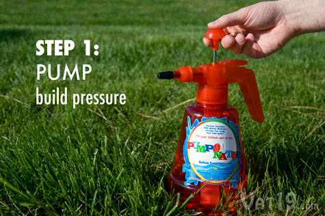 Step 1: Pump the lever to build pressure.