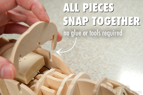 The DIY Remote Control Wooden Dinosaur does not require any tools or glue during assembly.
