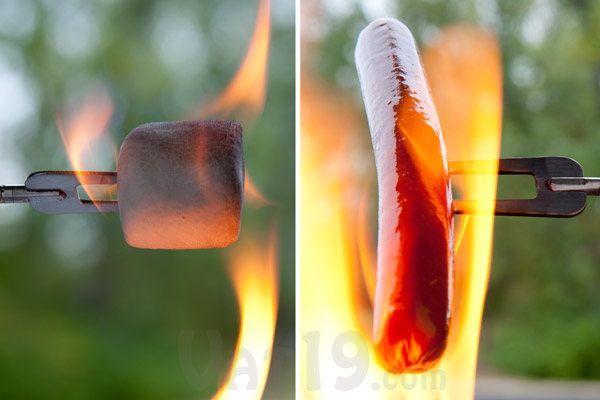 how to perfectly cook hot dogs