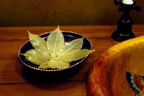 SoapLeaves in a soap dish in your home.