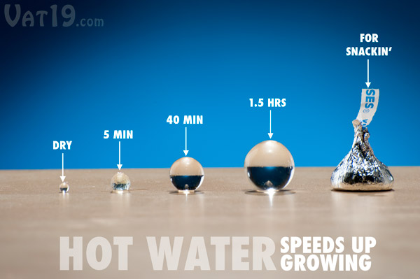 The Spitballs toy can be ready in as little as five minutes (in hot water).
