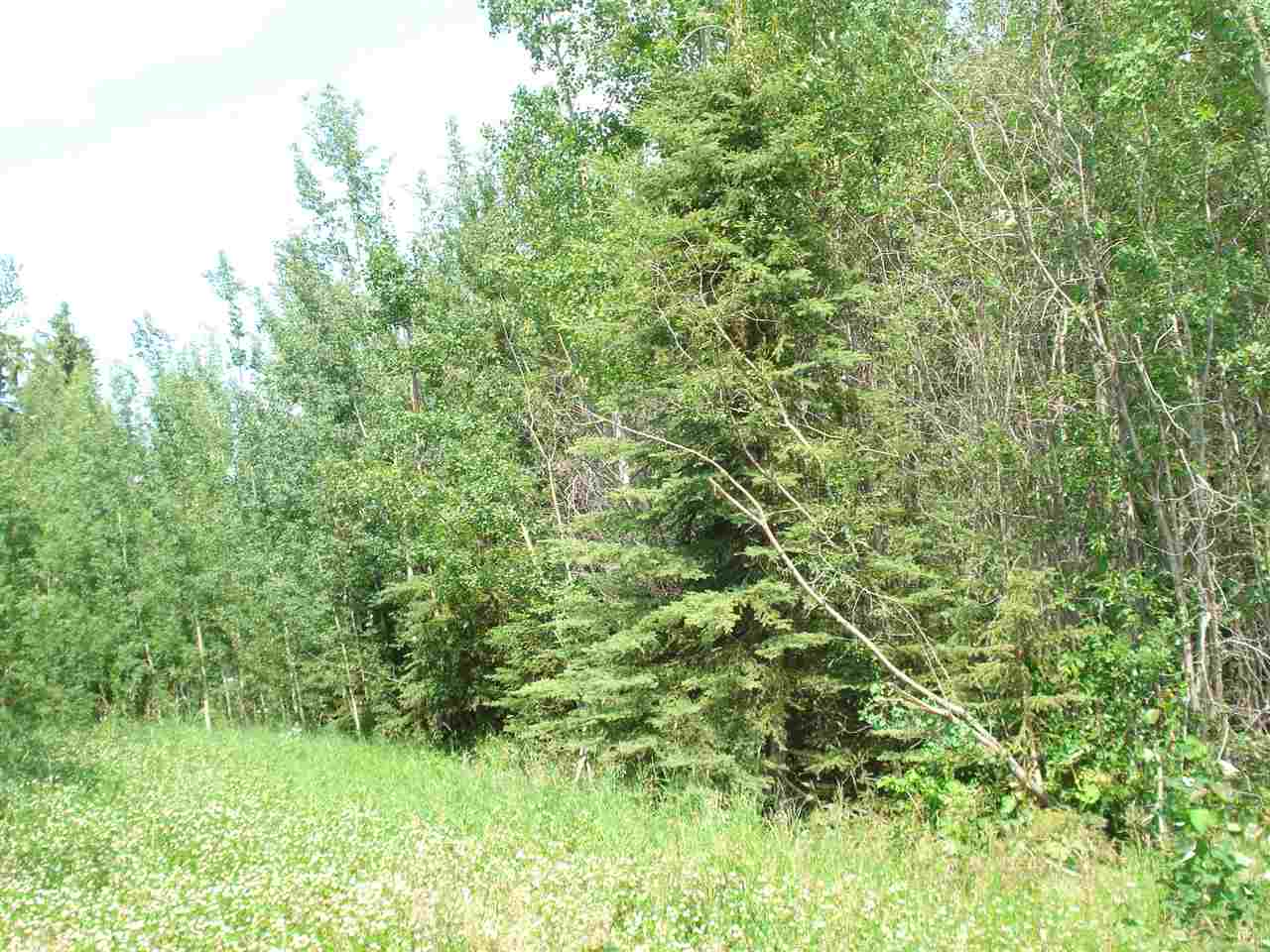 Silverwood_CWET Rural Land/Vacant Lot for sale:    (Listed 2021-02-10)