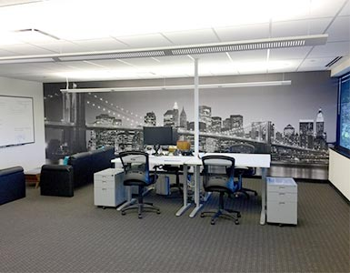 New York Mural in Office